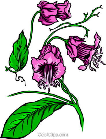 Purple flower Royalty Free Vector Clip Art illustration natu0051