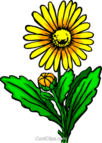 Yellow flower Royalty Free Vector Clip Art illustration natu0055