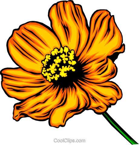 Orange flower Royalty Free Vector Clip Art illustration natu0056