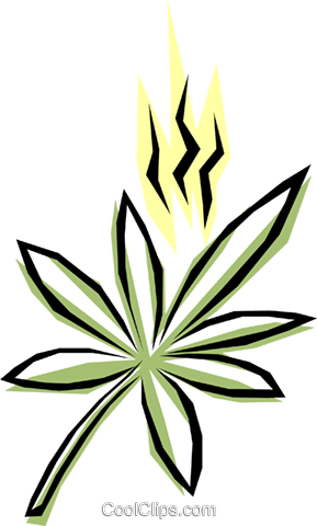 Marijuana Royalty Free Vector Clip Art illustration medi0121