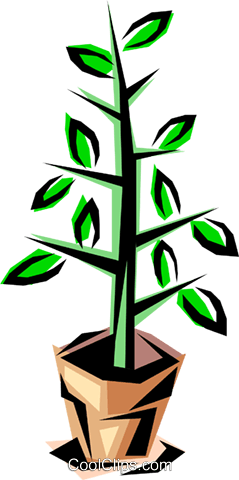 Potted plant Royalty Free Vector Clip Art illustration natu0158