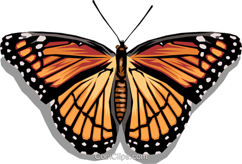 Butterfly Royalty Free Vector Clip Art illustration anim1045