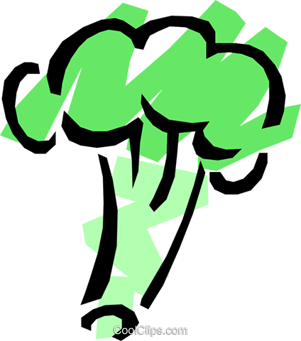 Broccoli Royalty Free Vector Clip Art illustration food0006