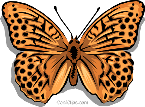 Butterfly Royalty Free Vector Clip Art illustration anim0005