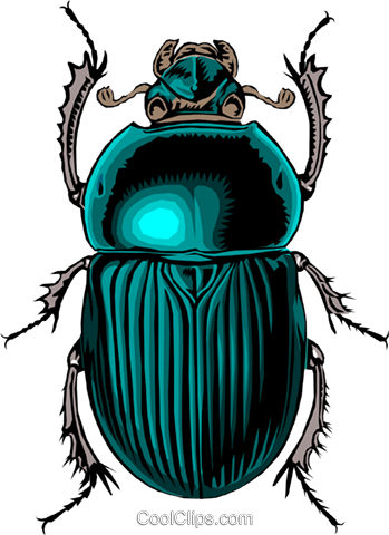 Beetle Royalty Free Vector Clip Art illustration anim0009