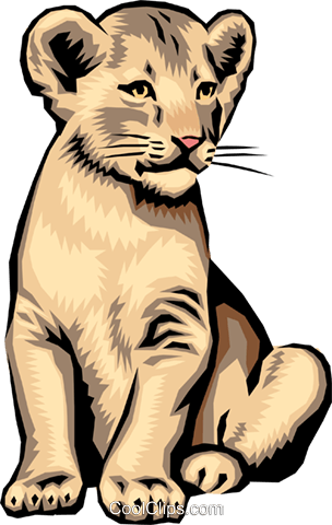 Lion cub Royalty Free Vector Clip Art illustration anim0012