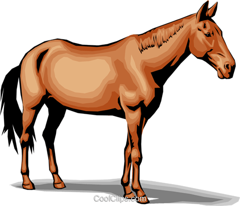 Horse Royalty Free Vector Clip Art illustration anim0018