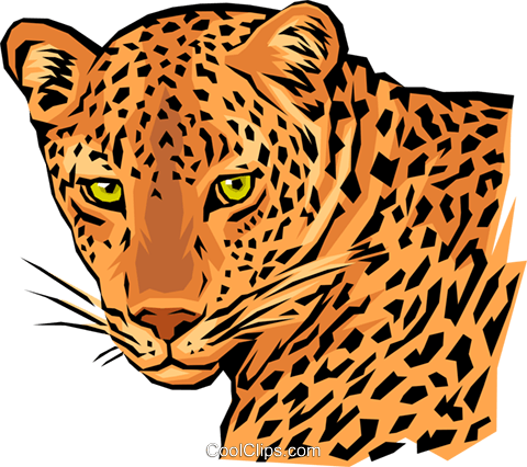 Leopard Royalty Free Vector Clip Art illustration anim0020