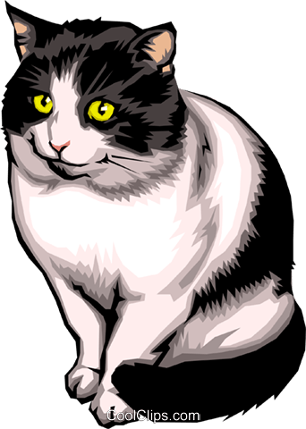 Cat Royalty Free Vector Clip Art illustration anim0025