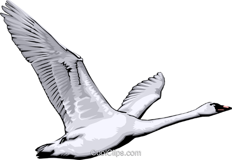 Swan Royalty Free Vector Clip Art illustration anim0028