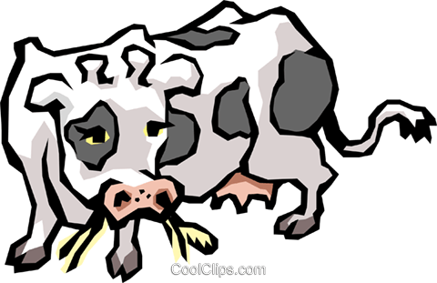 Cow Royalty Free Vector Clip Art illustration anim0498