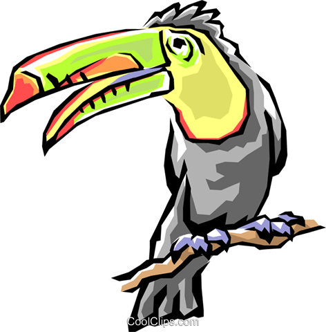 Toucans Royalty Free Vector Clip Art illustration anim0504