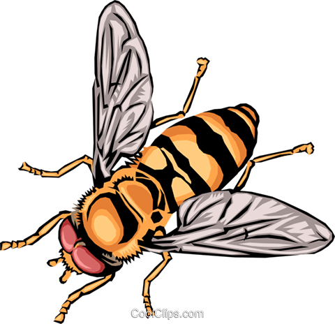 Wasp Royalty Free Vector Clip Art illustration anim0384