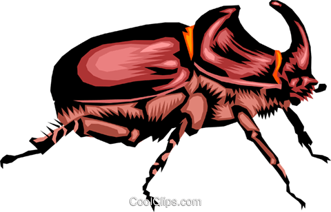 Beetle Royalty Free Vector Clip Art illustration anim0385
