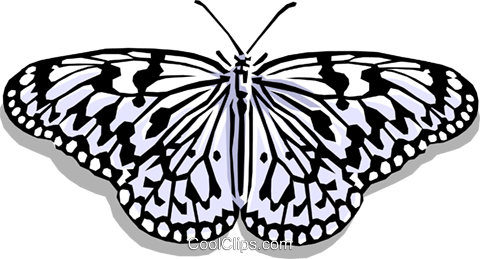 Butterfly Royalty Free Vector Clip Art illustration anim0388