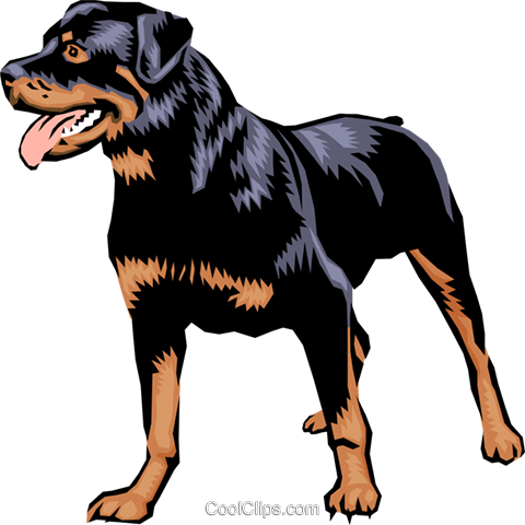 Rottweiler Royalty Free Vector Clip Art illustration anim0395