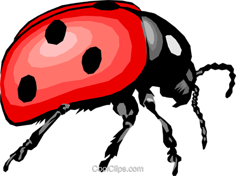 Ladybug Royalty Free Vector Clip Art illustration anim0399