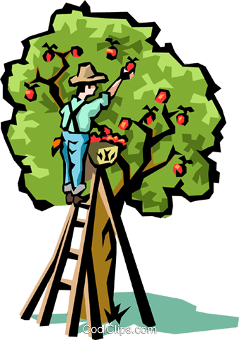 Apple trees Royalty Free Vector Clip Art illustration natu0140