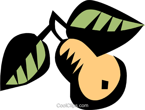 Pears Royalty Free Vector Clip Art illustration natu0272
