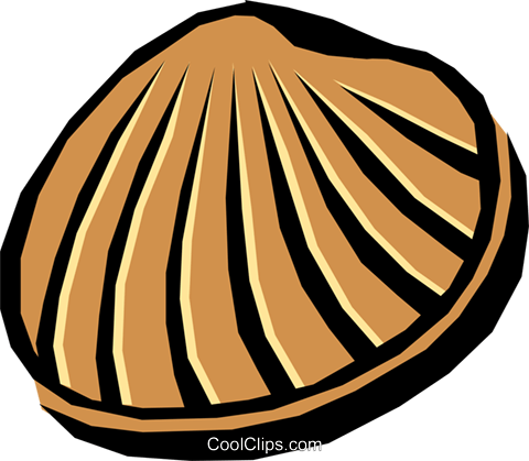 Seashell Royalty Free Vector Clip Art illustration anim0728