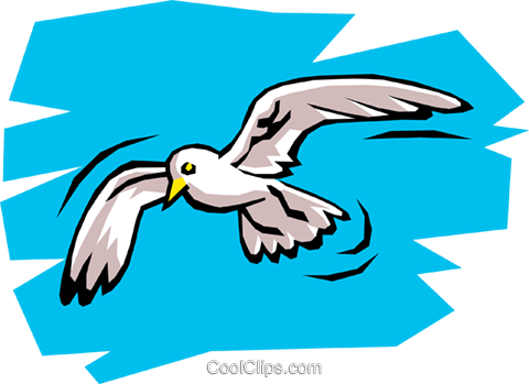 Seagull Royalty Free Vector Clip Art illustration anim0742