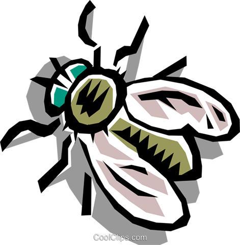 House fly Royalty Free Vector Clip Art illustration anim0751
