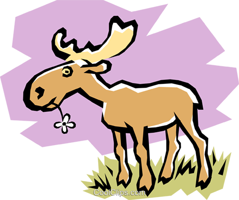 Moose Royalty Free Vector Clip Art illustration anim0752