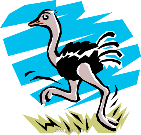 Ostrich Royalty Free Vector Clip Art illustration anim0753