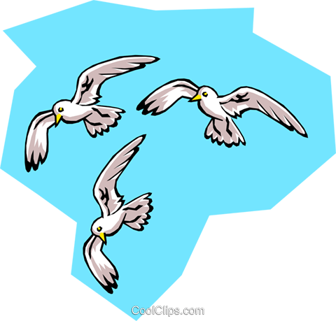 birds, Seagulls Royalty Free Vector Clip Art illustration anim0764
