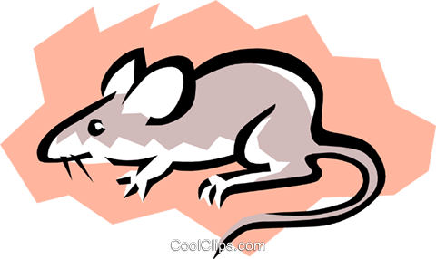 Mouse Royalty Free Vector Clip Art illustration anim0767