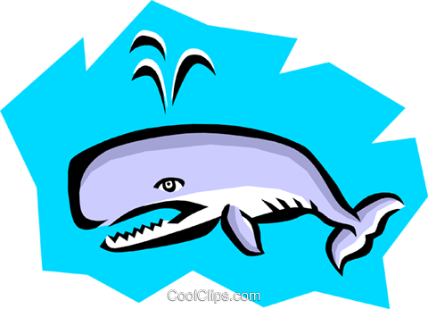 Whale Royalty Free Vector Clip Art illustration anim0770