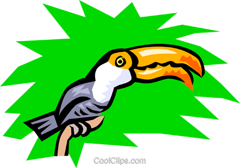 Toucan Royalty Free Vector Clip Art illustration anim0775