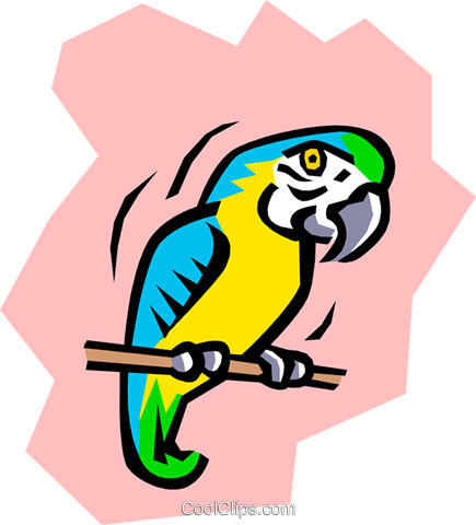 Parrot Royalty Free Vector Clip Art illustration anim0776