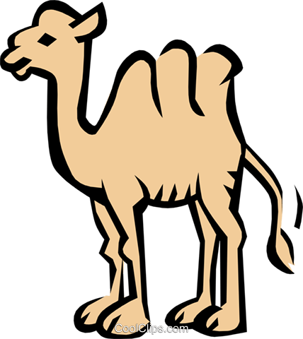Camel Royalty Free Vector Clip Art illustration anim0791