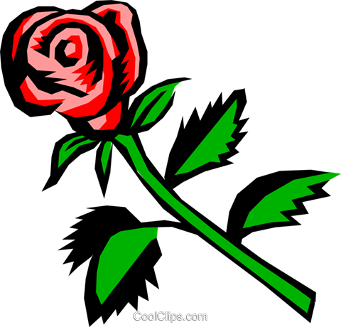 Rose Royalty Free Vector Clip Art illustration natu0066