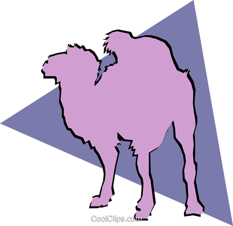 Camels Royalty Free Vector Clip Art illustration anim0919