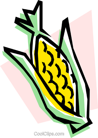 Corn on the cob Royalty Free Vector Clip Art illustration food0076