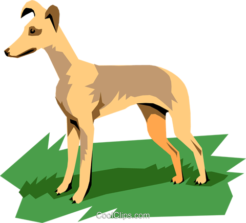 Dog Royalty Free Vector Clip Art illustration anim1104