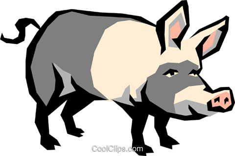 Pig Royalty Free Vector Clip Art illustration anim1124