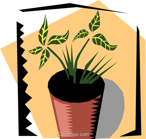 Houseplant Royalty Free Vector Clip Art illustration natu0481