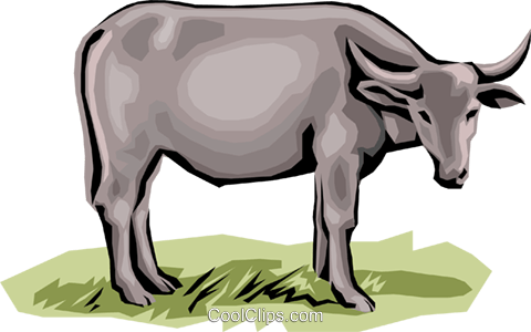 Cow Royalty Free Vector Clip Art illustration anim1300