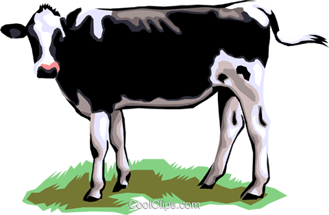 Dairy cow Royalty Free Vector Clip Art illustration anim1301