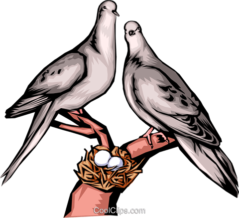 Doves Royalty Free Vector Clip Art illustration anim1340