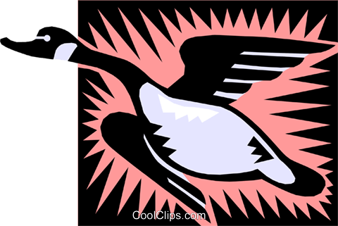 goose Royalty Free Vector Clip Art illustration anim1366