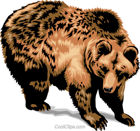Grizzly Bear Royalty Free Vector Clip Art illustration anim1384