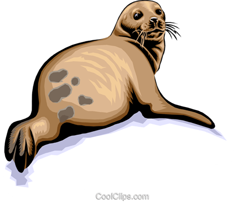 Seal Royalty Free Vector Clip Art illustration anim1385