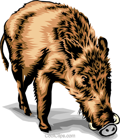 boar Royalty Free Vector Clip Art illustration anim1387