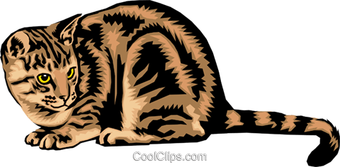 Cat Royalty Free Vector Clip Art illustration anim1389