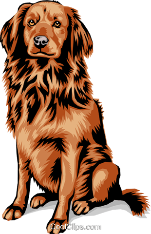 dog Royalty Free Vector Clip Art illustration anim1392