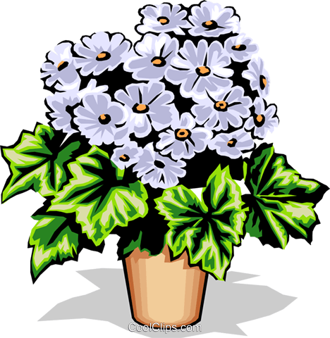 Potted flower Royalty Free Vector Clip Art illustration natu0636